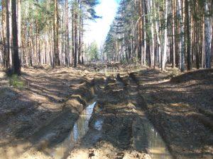 лесовозная